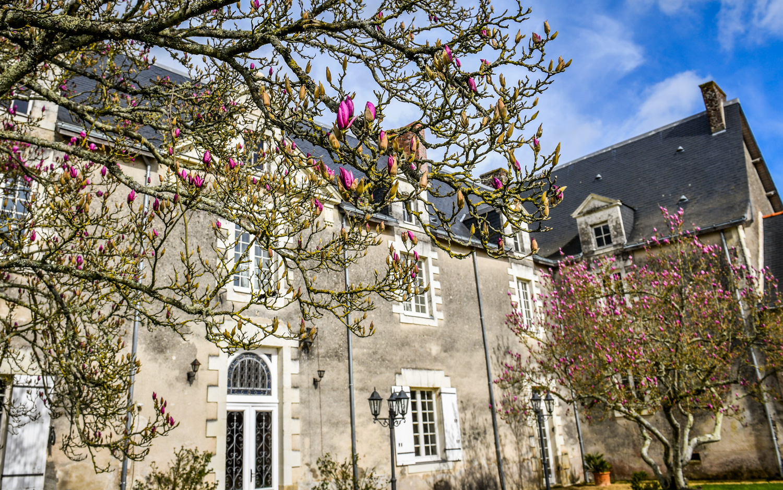 Cour du Château fleurie